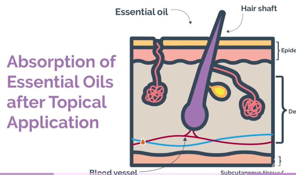 olie på huden
