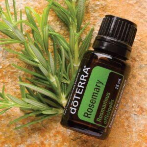 rosmarin æterisk olie rosemary oil