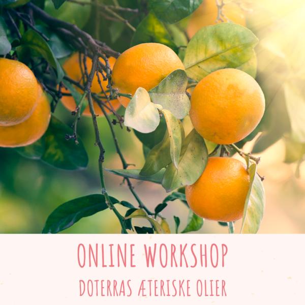 Online workshop doTERRAs Aeteriske Olier