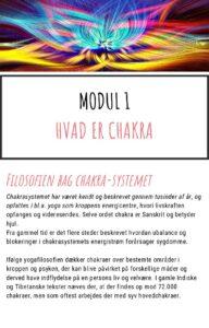 Modul 1 Online kursus Chakra og aeteriske olier kom godt i gang pdf