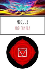 Modul 2 Online kursus Chakra og aeteriske olier kom godt i gang pdf