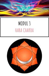 Modul 3 Online kursus Chakra og aeteriske olier kom godt i gang pdf