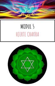 Modul 5 Online kursus Chakra og aeteriske olier kom godt i gang pdf
