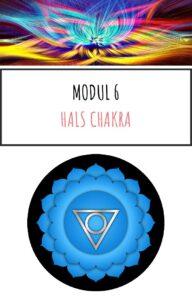 Modul 6 Online kursus Chakra og aeteriske olier kom godt i gang pdf