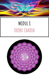 Modul 8 Online kursus Chakra og aeteriske olier kom godt i gang pdf