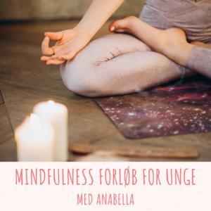 Mindfulness 1:1 Forløb