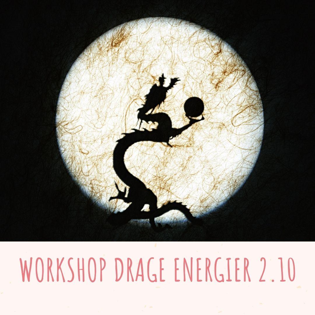 workshop i Drage energier