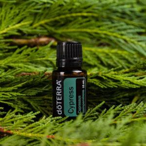 ENKELTOLIE Cypress olie
